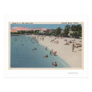 Colonial Beach, VA - Sunbathing & Swimming Scene Postcard
