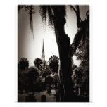 Colonial Cemetery, Savannah (Black And White) Photo
