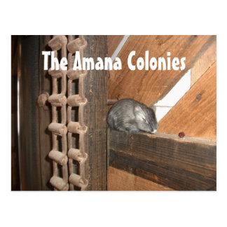 Colonias de Amana, centro de los visitantes, Amana Tarjetas Postales