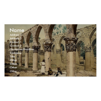 Colonnade of the ancient mosque, Baalbek, Holy Lan Business Cards