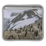Colony of Chinstrap penguins iPad Sleeves