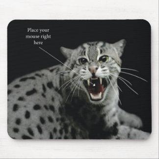 ¡Coloque su ratón aquí (en la boca del gato!) hah! Mousepad