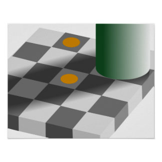 Color and Brightness Constancy Optical Illusion Poster