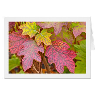 """COLOR AND TEXTURE/LAYERS OF AUTUMN LEAVES/NOTECAR CARD"