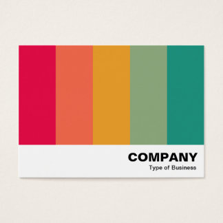 Color Bars 02 Business Card