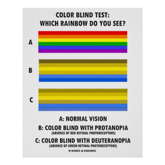 Color Blind Test Which Rainbow Do You See? Poster