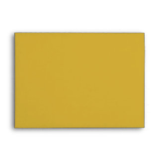 Color Block Gold Envelope Lined in Black