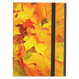 Color Burst of Fall Leaves Autumn Colors iPad Folio Case