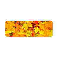 Color Burst of Fall Leaves Autumn Colors Return Address Label