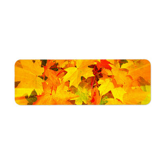 Color Burst of Fall Leaves Autumn Colors Label