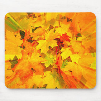 Color Burst of Fall Leaves Autumn Colors Mouse Pad