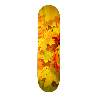 Color Burst of Fall Leaves Autumn Colors Skate Board Decks