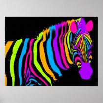 Color Burst Zebra Poster