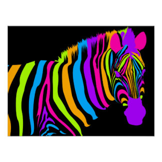 Color Burst Zebra Poster