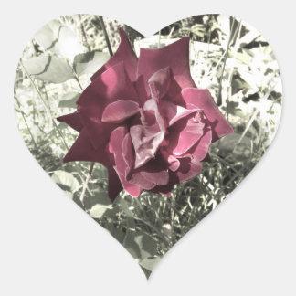 Color color de rosa del vintage pegatina en forma de corazón