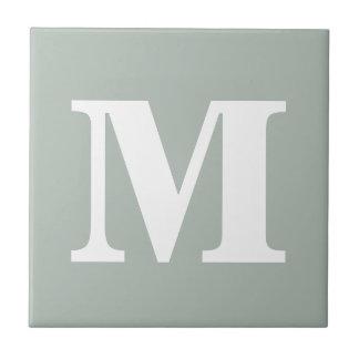 Color complementario contemporáneo del gris de azulejo cuadrado pequeño