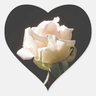 Color crema subió en el fondo oscuro pegatina en forma de corazón