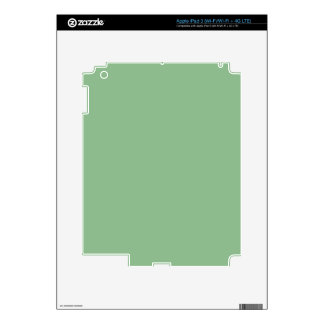color dark sea green decal for iPad 3
