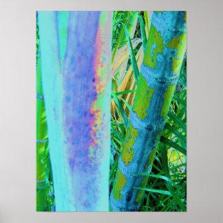 Color de bambú póster