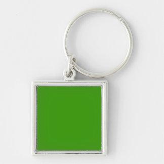 Color de fondo verde sólido 339900 llavero personalizado