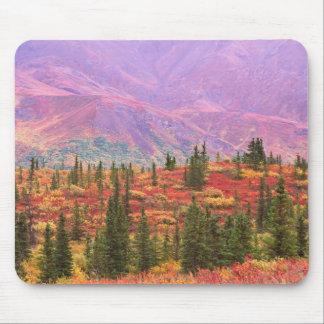 Color de la caída en el parque nacional de Denali Mouse Pad