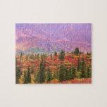 Color de la caída en el parque nacional de Denali Puzzles