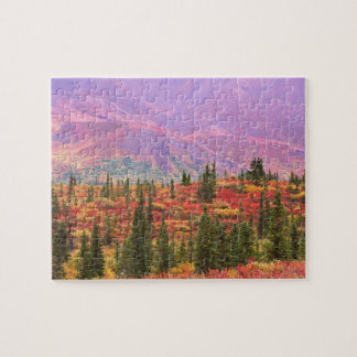 Color de la caída en el parque nacional de Denali Rompecabeza Con Fotos