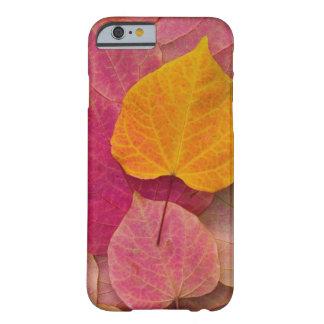 Color de la caída en el pensamiento Redbud del Funda Para iPhone 6 Barely There