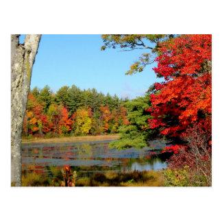 Color de la caída en la postal de Nueva Inglaterra