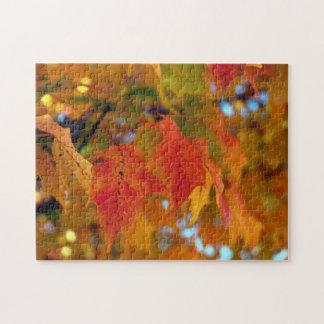 Color de la caída rompecabezas con fotos
