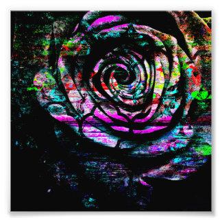 Color de rosa abstracto pintada colorido artístico fotografías