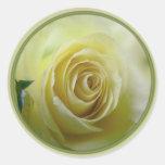 color de rosa amarillo claro pegatinas redondas
