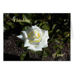 Color de rosa amarillo claro:  Pensando, en usted Felicitacion