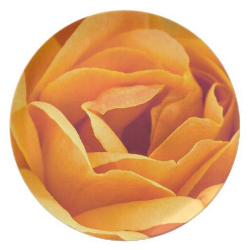 Color de rosa amarillo-naranja brillante platos para fiestas