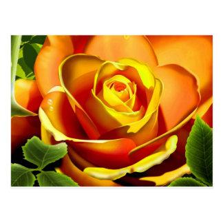 Color de rosa amarillo-naranja tarjetas postales