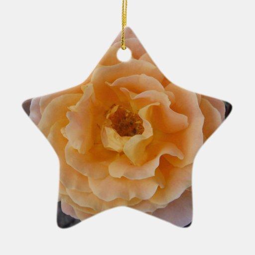 Color de rosa anaranjado adorno navideño de cerámica en forma de estrella