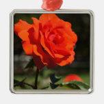 Color de rosa anaranjado ornamento para arbol de navidad
