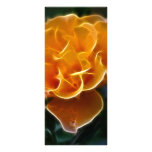 Color de rosa anaranjado del deslumbramiento y el  lona personalizada