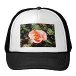 Color de rosa anaranjado gorra