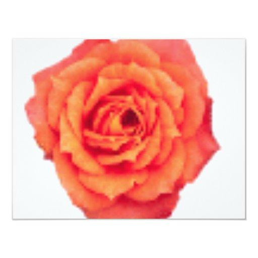 """Color de rosa anaranjado invitación 4.25"""" x 5.5"""""""