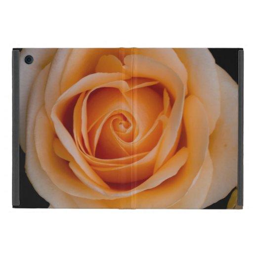Color de rosa anaranjado iPad mini protector