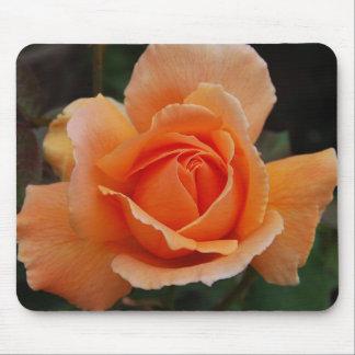 Color de rosa anaranjado tapetes de ratones