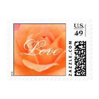 Color de rosa anaranjado timbres postales