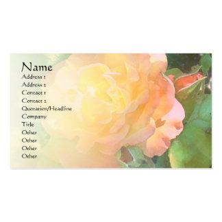 Color de rosa anaranjados claros palidecen la tarjetas de visita
