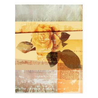 Color de rosa antiguo postal