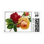 Color de rosa antiguo - sello