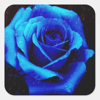 Color de rosa azul dramático pegatina cuadrada