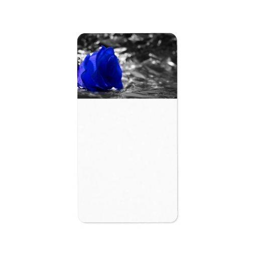 Color de rosa azul en fondo de la plata del lado i etiquetas de dirección