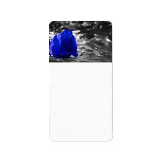Color de rosa azul en fondo de la plata del lado i etiqueta de dirección