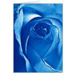 Color de rosa azul felicitaciones